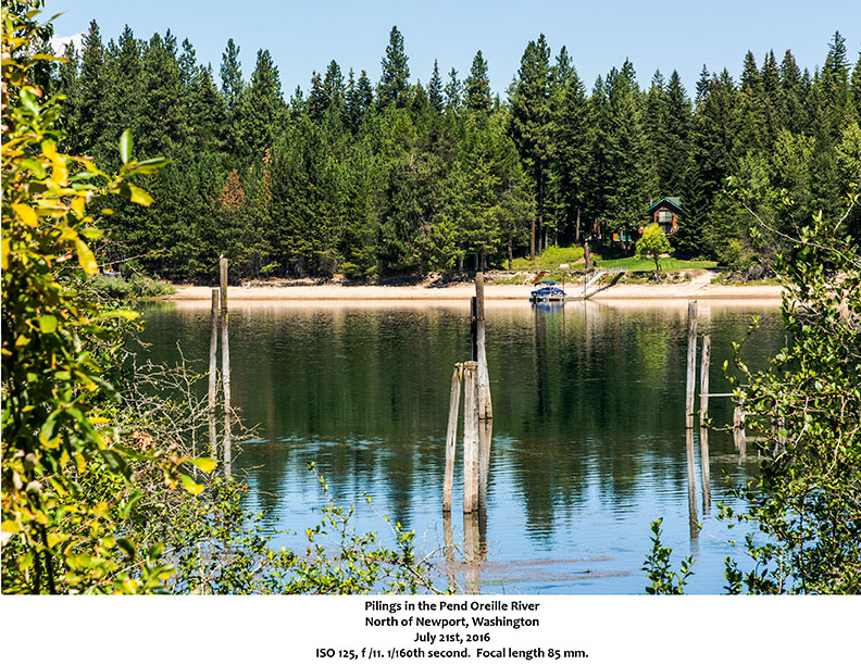 Pilings in the Pend Oreille River