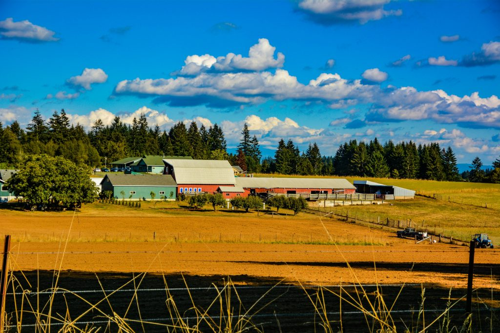 A Clark County Farm near Battle Ground, Washington.