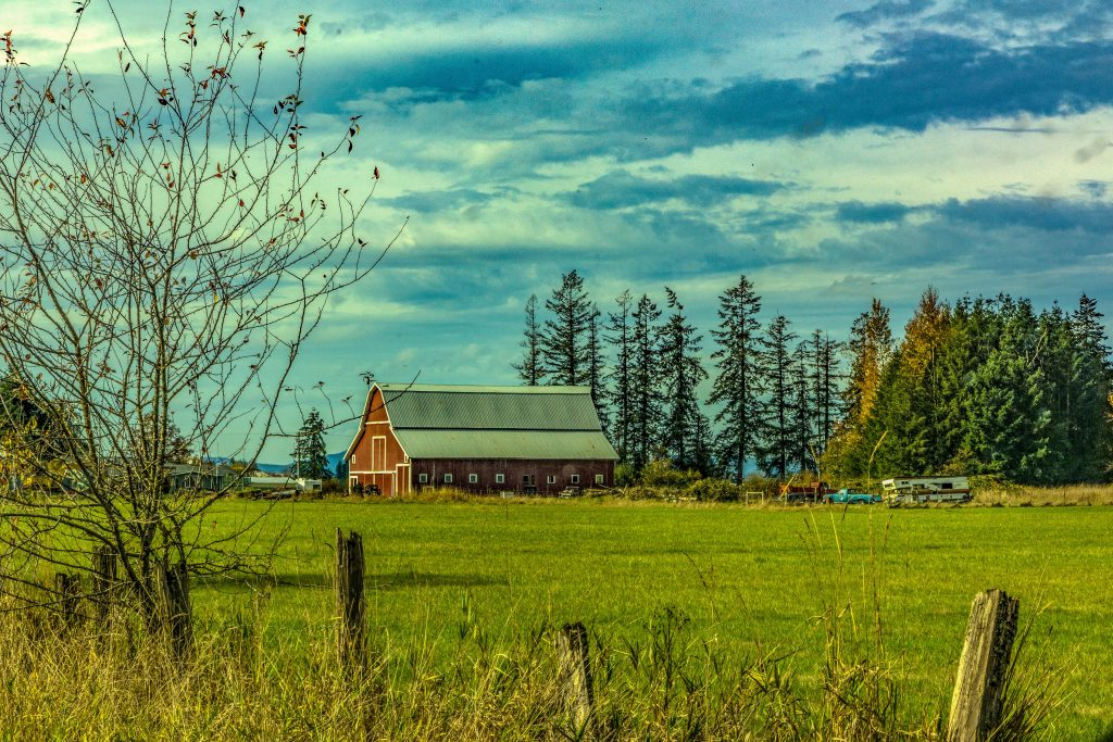 A Lewis County Farm