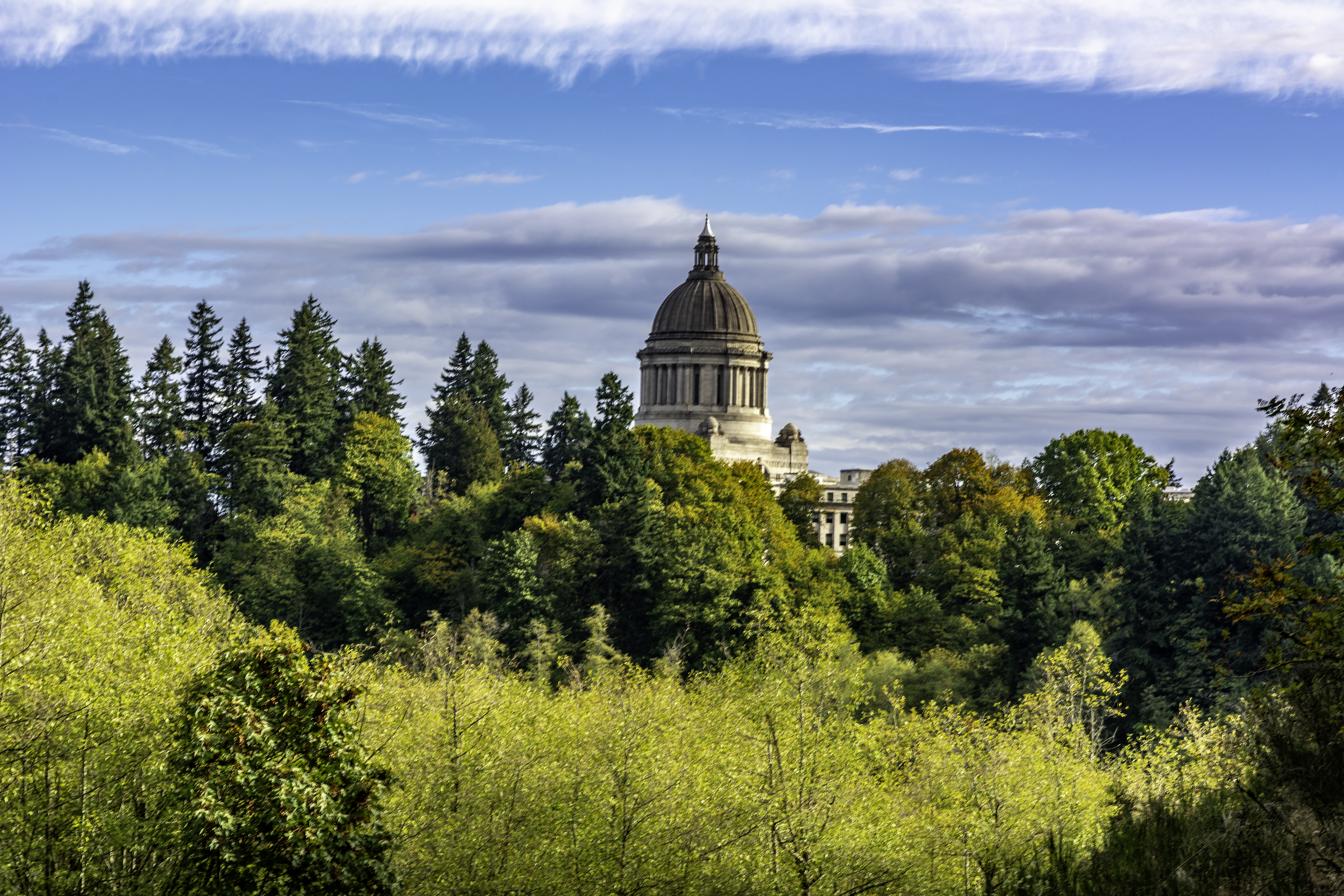 The Washington State Capitol:  Evergreen--The Thirty-Nine Counties of Washington State