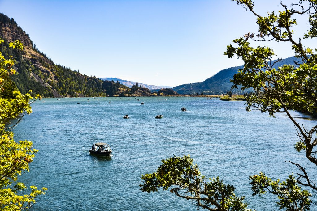 Boats fishing on Drano Lake, a bay of the Columbia River in Skamania County., one of the