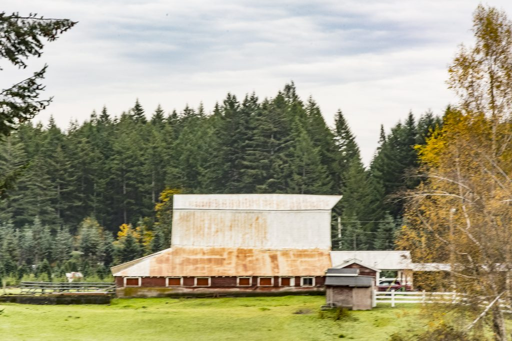 A Mason County farm with barn, near Kamilche, Washington