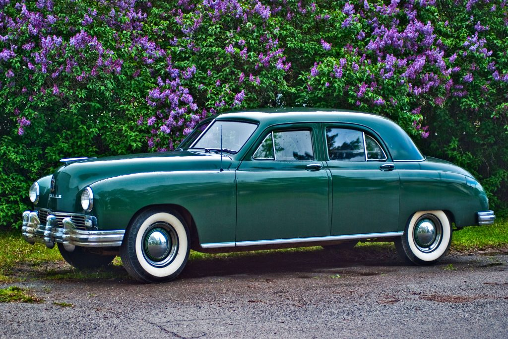 a green 1948 Frazer Standard sedan in front of a lilac hedge in full bloom.
