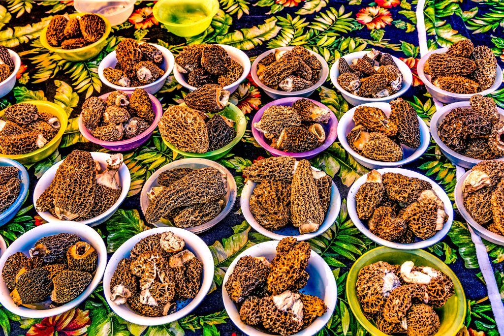 Bowls of Morel Mushrooms at the Butte Farmers' Market