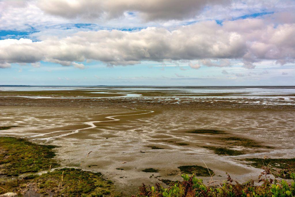 Mud flats of Willapa Bay seen driving around Pacific County, Washington