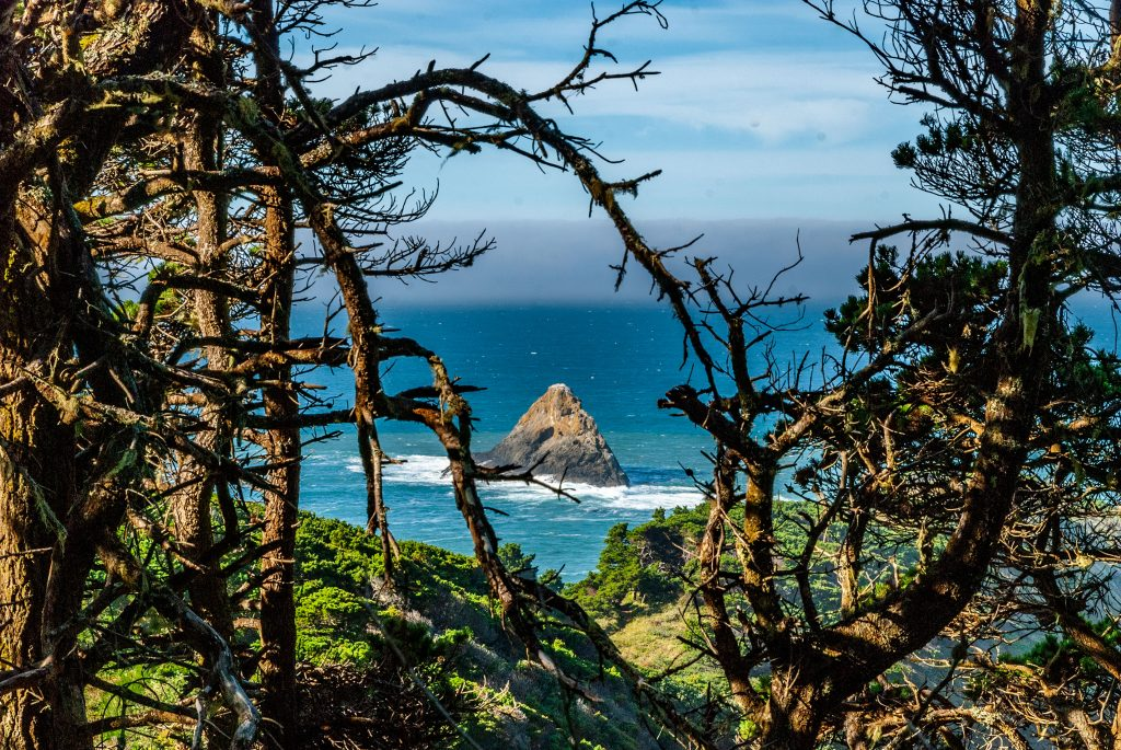 A view of the Pacific Ocean from Port Orford Head, Oregon