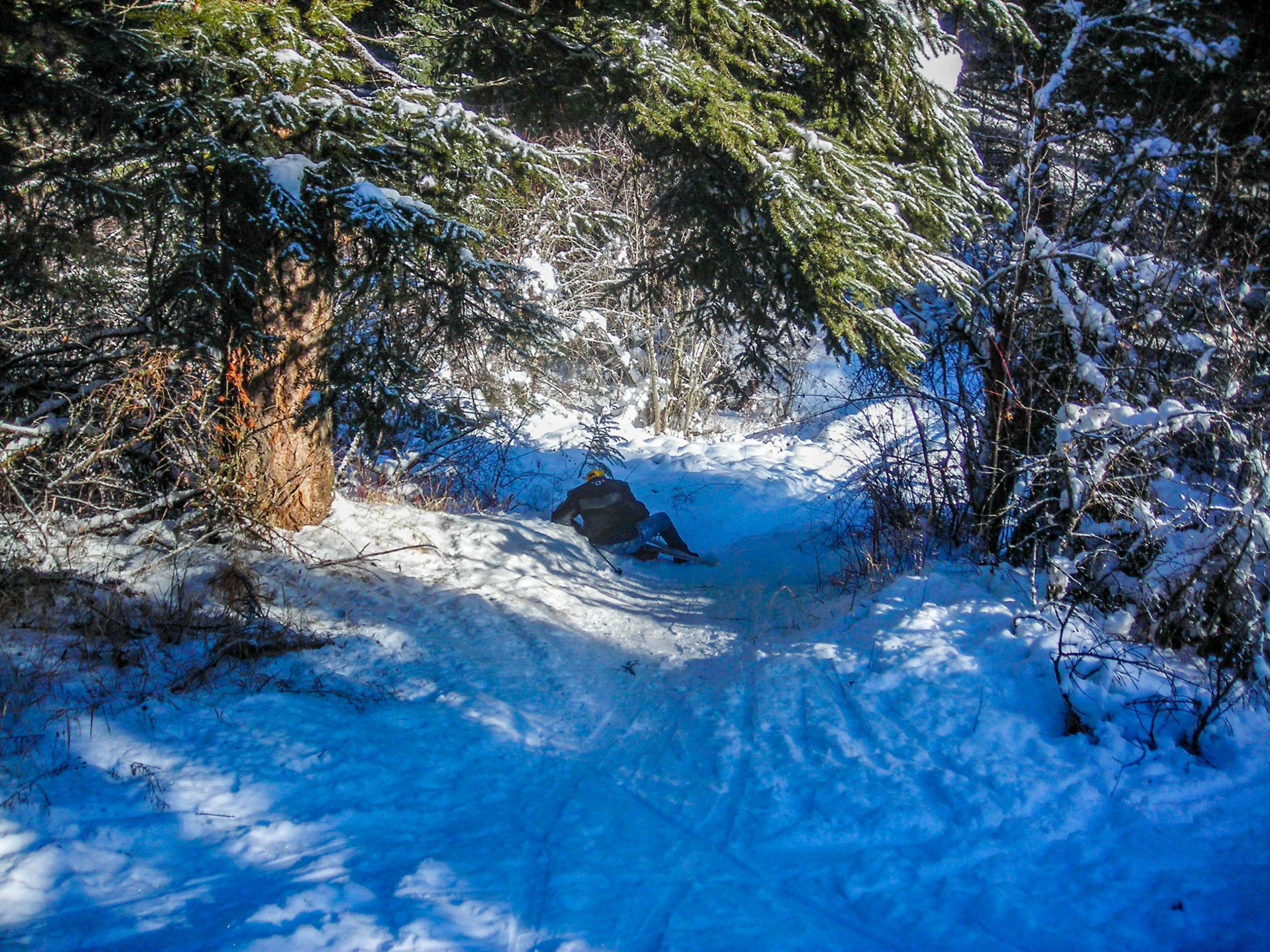 Cross-Country Skiing in the Rattlesnake