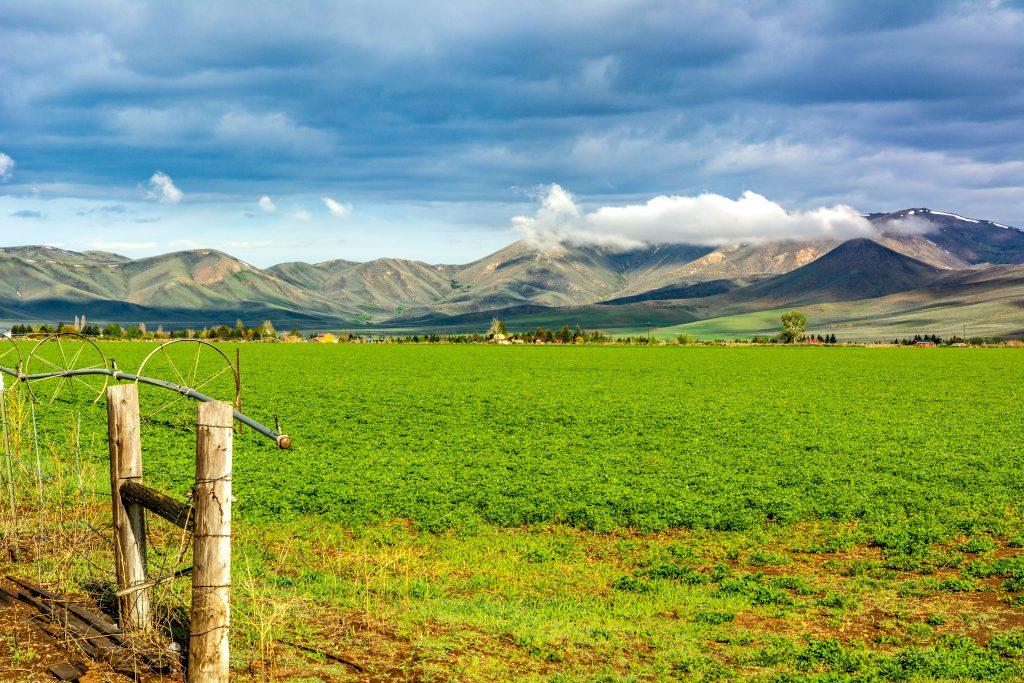 Farmland in southern Blaine County, Idaho.