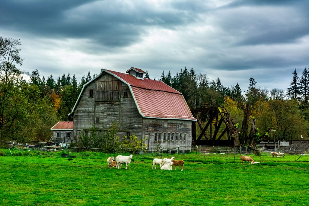 A Snohomish County Washington Farm.  Link takes you to my RedBubble sales gallery.